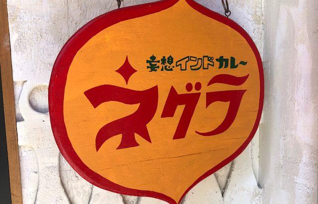 スパイスの使い方が変態!「ネグラ 妄想インドカレー」(高円寺)